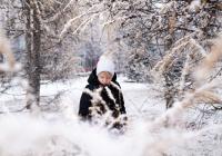 Первый снег пошел в Новосибирске