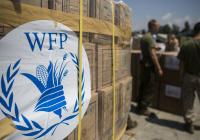Россия направит $20 млн на продовольственную помощи Сирии