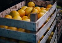 Обнаружены самые популярные товары на фоне пандемии