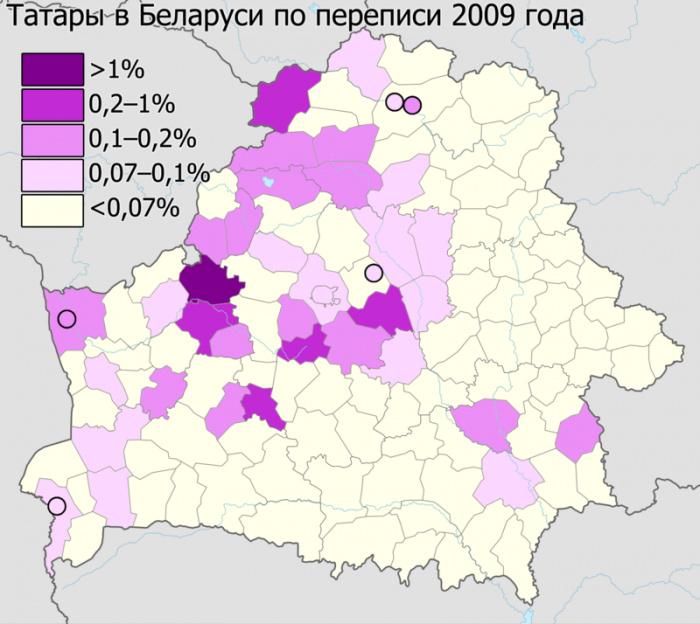 Татары в Беларуси по переписи 2009 года