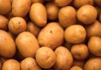 Озвучена серьезная ошибка при варке картофеля