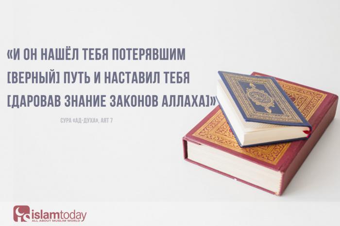 Аяты Корана, которые скрасят даже самый мрачный день. (Источник фото: freepik.com)