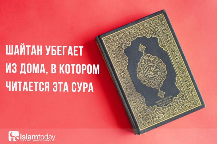 Мусульманин, читающий эту суру может увидеть ангелов