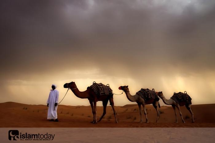 Возвращение мусульман в Мекку. (Источник фото: pixabay.com)