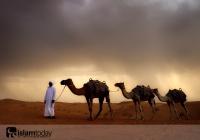 К чему привело возвращение пророка Мухаммада (мир ему) в Мекку в 630 году?