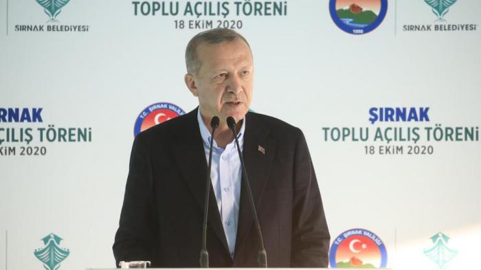Эрдоган заявил, что Россия и другие страны вооружают Армению в Карабахе.