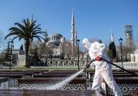 Минздрав Турции заявил о втором пике пандемии коронавируса
