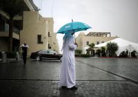 ОАЭ потратят $1,5 млн на дождь
