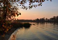 Синоптики пообещали не по сезону теплую погоду в Москве