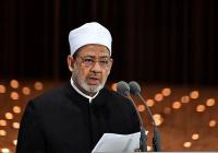 Верховный имам Аль-Азхара призвал мировое сообщество защитить мусульман