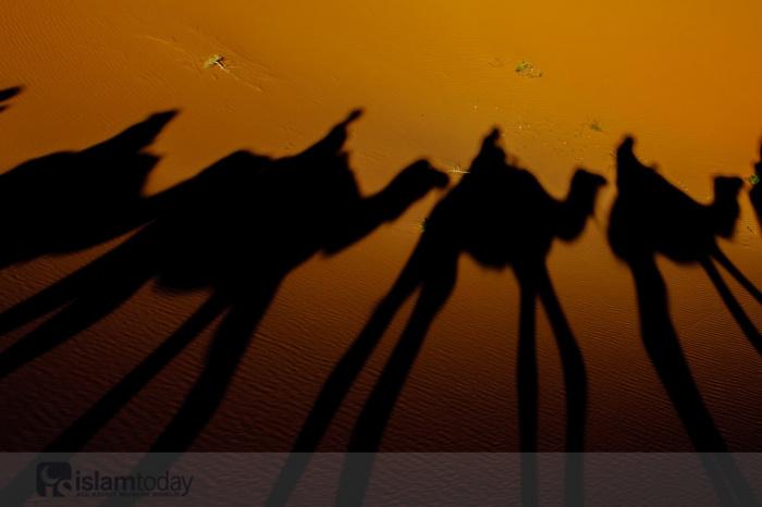 3 лучших поколения, по мнению Пророка Мухаммада (мир ему). (Источник фото: freepik.com)
