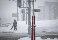 Стало известно, какой будет предстоящая зима