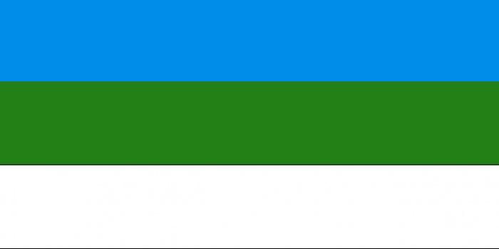 Флаг Башкурдистана (по проекту Заки Валиди)