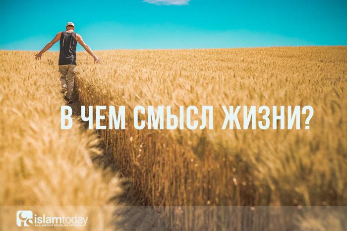 В чем смысл жизни? (Источник фото: pixabay.com)