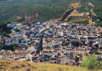 Как мусульманские города Средневековья заложили стандарты жизни современных мегаполисов