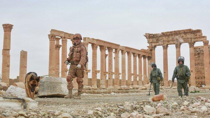 Россия готова способствовать восстановлению сирийских объектов истории и культуры.