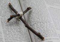 В Европе в 2019 году совершено около 600 христианофобских преступлений