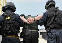 В МВД сообщили о росте числа террористических преступлений в России