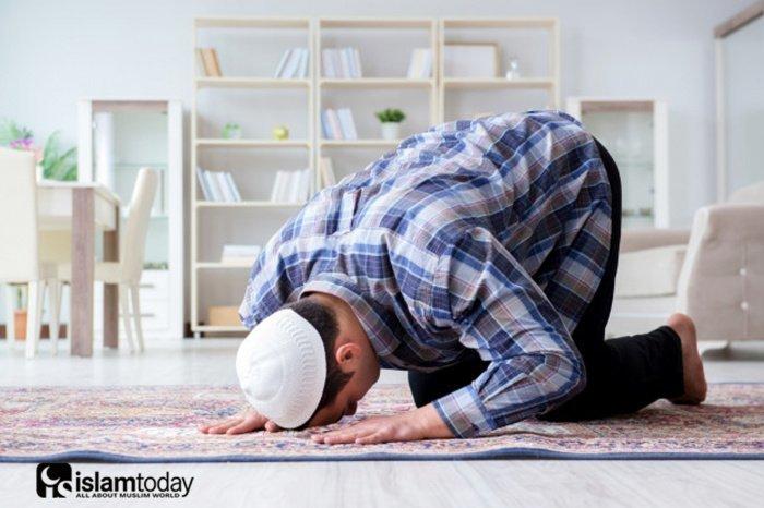 Чем отличается намаз лицемера, от намаза истинно верующего? (Источник ответа: freepik.com)