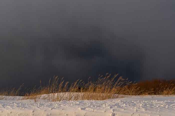 Сейчас в Центральной России есть снежный покров высотой 8-10 см, в ряде районов высота снега достигает 13-14 см