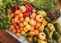 Названа диета, которая помогает уменьшить риск коронавируса