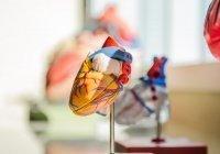 Выявлены ключевые признаки инфаркта
