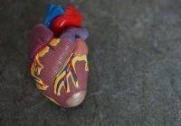 Стало известно о влиянии COVID-19 на сердце и сосуды