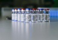 Россия начала поставки вакцины от коронавируса в Африку