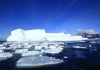 После таяния ледника обнаружены уникальные артефакты