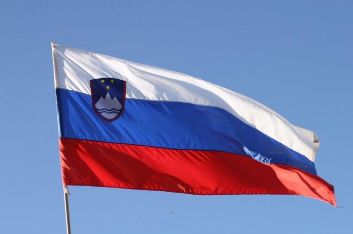 Правительство Словении запретило деятельность «Хезболлах».