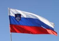 Словения признала «Хезболлах» террористической организацией