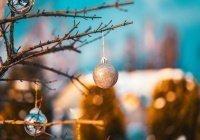 Второй российский регион объявил 31 декабря выходным днем