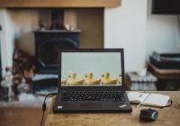 Установлены способы предотвратить перегрев ноутбука