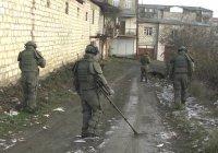 Российские миротворцы разминировали более 70 га территории в Карабахе