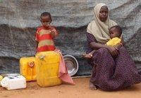 Мусульмане могут стать главными жертвами глобального голода