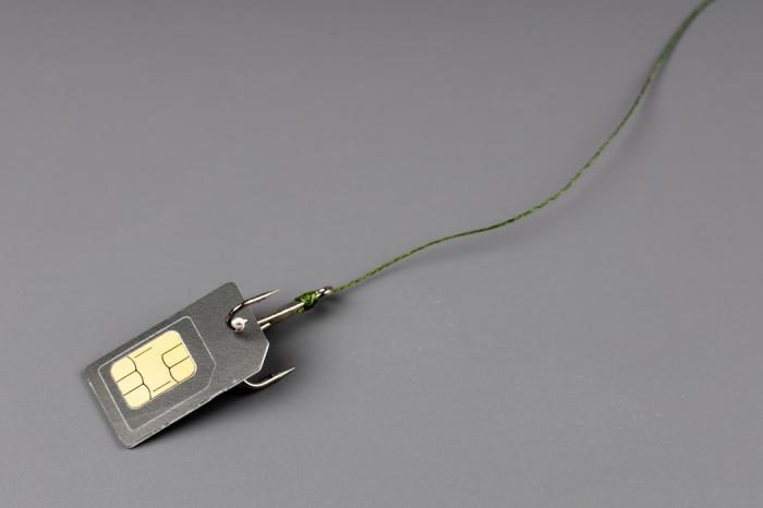 Установлены способы похищения данных с сим-карты