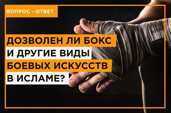 Дозволен ли бокс в исламе? (Источник фото: freepik.com)