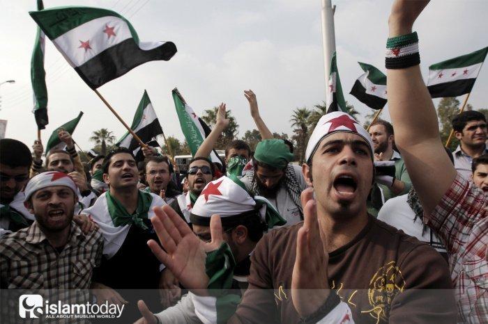 Отчаянная американка о сирийском кризисе и не только. (Источник фото: yandex.ru)