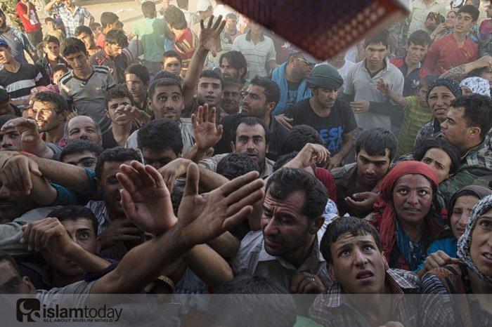 Дженис Кроткамп о сирийском кризисе. (ИСточник фото: yandex.ru)