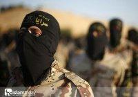 Доклад о радикализации: как становятся террористами. Часть 2