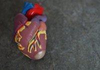 Обнаружен неочевидный симптом болезней сердца
