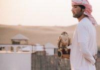 Житель Дубая сядет в тюрьму за то, что обманул жену