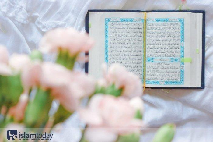 Любовь к Пророку Мухаммаду. (Источник фото: freepik.com)
