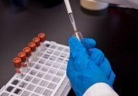 Первый случай заражения «британским» штаммом коронавируса обнаружен в России