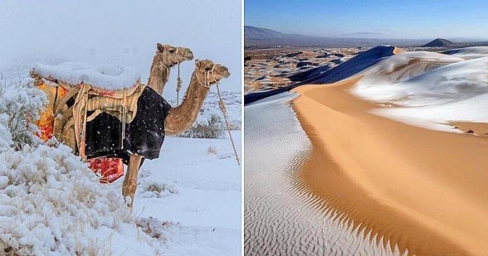 Снег выпал в пустыне Сахара.
