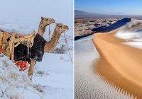 В пустынях Алжира и Марокко выпал снег