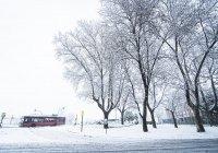 Россиянам пообещали аномальное потепление