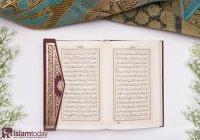 Полчище шайтанов: все против одной лишь суры Корана