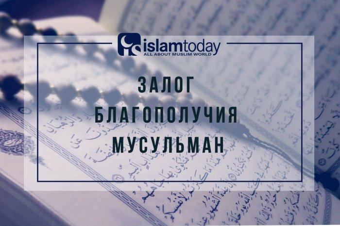 Залог благополучия мусульман: брать знания у верных и больших ученых