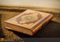 Наставление пятницы: Книга, в которой нет сомнения